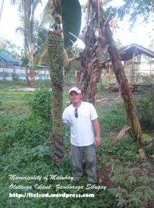 @Mabuhay, Zamboanga Sibugay