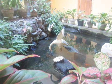 Verbum Fish Pond